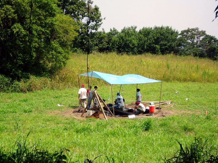 Excavations at the Parchman site in Coahoma County